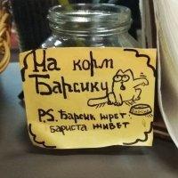 Коротко и ясно) :: Галина Бобкина