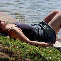 Я на солнышке лежу :: Дмитрий Солоненко