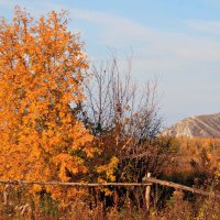 Природы радужный наряд и блеск, и роскошь увяданья... :: Евгений Юрков