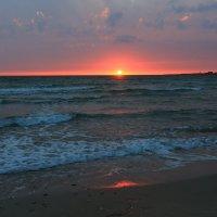 Уже снова хочется  солнца и ласкового моря :: ninell nikitina