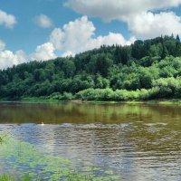 Река Мста :: Елена Грошева