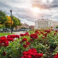 Правительство области :: Юлия Батурина