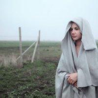 Туман :: Андрей Васильев