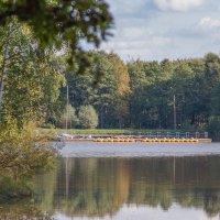 Уголок старого парка (1) :: Виталий