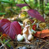 Осень наступила, отцвела капуста..:) :: Андрей Заломленков