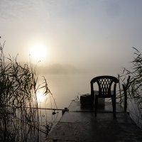 утро туманное :: Ольга