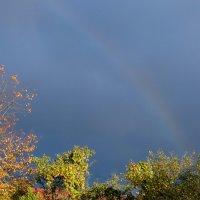 Осенняя радуга. :: Люба