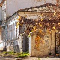 Осенний заброшенный дом :: ВАДИМ СКОРОБОГАТОВ