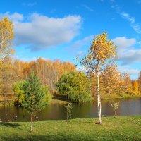 осень :: Надежда Постникова