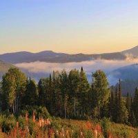 Ясным утром в горах :: Сергей Чиняев