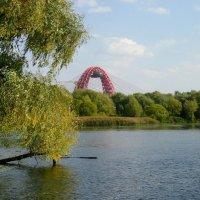 Живописный мост :: Ирина - IrVik