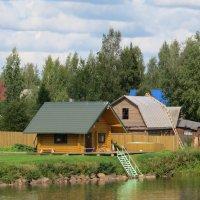 Посёлок на берегу :: Вера Щукина