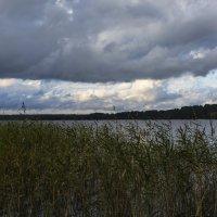 Озеро :: Nika Polskaya