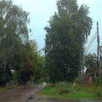 Дождь за стеклом не страшен. :: Николай Масляев