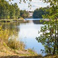 Уголок старого парка (12) :: Виталий