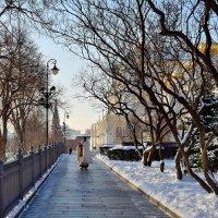 Прогулки в Московском Кремле. :: Olcen Len