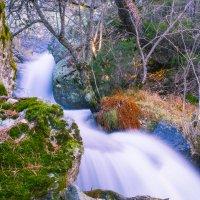 Весенний поток. :: Andrey Odnolitok