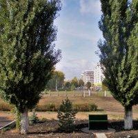 Когда деревья были большими. :: Венера Чуйкова