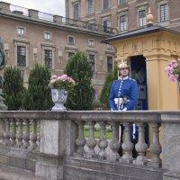 Пост у фасада королевского дворца на набережной :: Александр Рябчиков