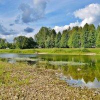 Река зарастает :: Leonid Tabakov