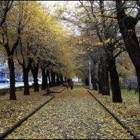 Осень. :: Юрий ГУКОВЪ