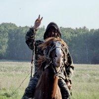 Всем привет - от коня тоже! :: Светлана Рябова-Шатунова