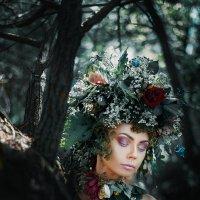 Духи леса :: Андрей Перфилов
