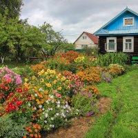 Домик в деревне :: Нина Кутина