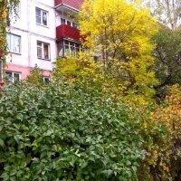 Осень в моем городе :: Елена Семигина