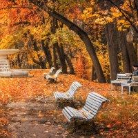 Осеннее чтение :: Юлия Батурина