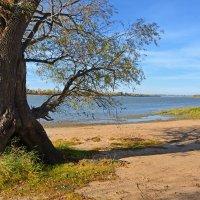 Дикий  пляж :: Геннадий С.
