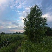 """""""...Я буду долго гнать велосипед..."""" :: Валентин Котляров"""