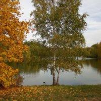 У озера :: Татьяна Георгиевна