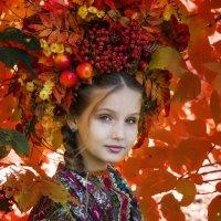 Золотая осень :: Юлия Бокадорова
