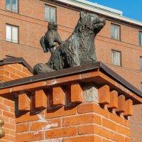 Mötesplatser - Stor mötesplats - Хельсинки. :: Борис Иванов