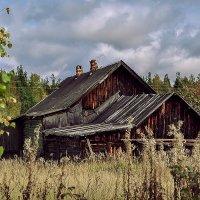 В поле за околицей.... :: АЛЕКСАНДР СУВОРОВ
