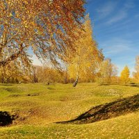 Золотая осень :: Владимир Зыбин