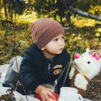 Детская осень :: Евгений Князев