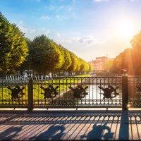 Ограда 2 Садового моста через Мойку :: Юлия Батурина