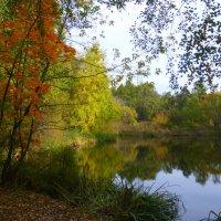 Осень с отражением :: Татьяна Лобанова