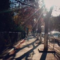 Осень крымской столицы... Autumn of the Crimean capital... :: Сергей Леонтьев