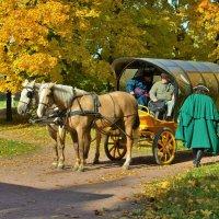 Конные поездки в усадьбе Коломенское :: Константин Анисимов