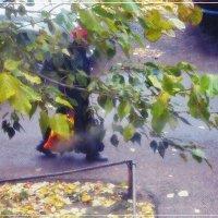 Осеннее... :: Виктор Катин