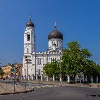 Вид на собор Михаила Архангела. :: Maxim Semenov