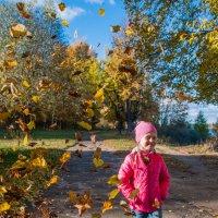 Падают листья... :: Макс Беккер
