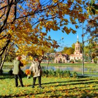 Золотая осень в Алтуфьево :: Olcen Len