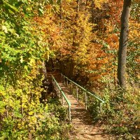 Осенний мостик :: Александр Тулупов