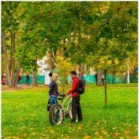 Я про съёмку,а ты про велогонку. :: Maxim Semenov