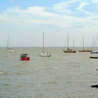 Яхты у берега Таганрога :: Сергей Карачин