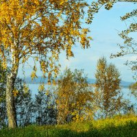Ясная осень :: Ирина АЛЕКСАндрович